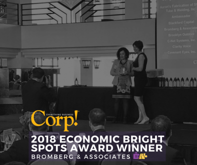 2018 Economic Bright Spots Awards Winner: Bromberg & Associates